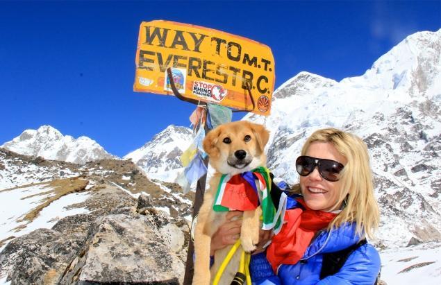 Dalla discarica alle stelle: il cane Rupee conquista l'Everest